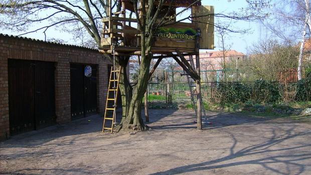 800px-Tree_house_in_Neubrandenburg-2-620x350