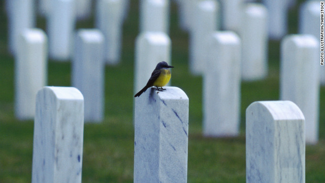 130221171758-cemetery-headstones-story-top