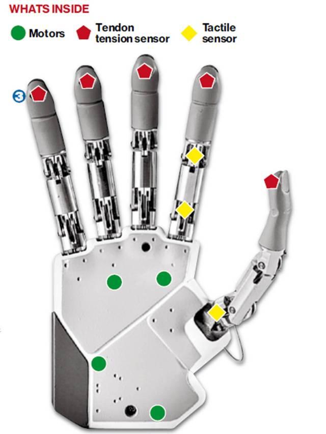 2-bionic-hands