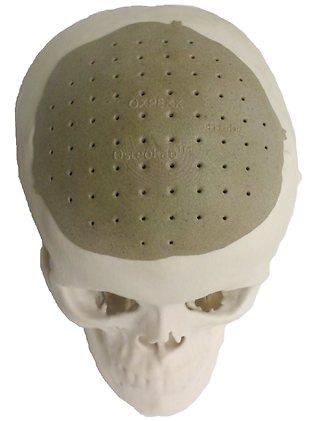 073188-skull