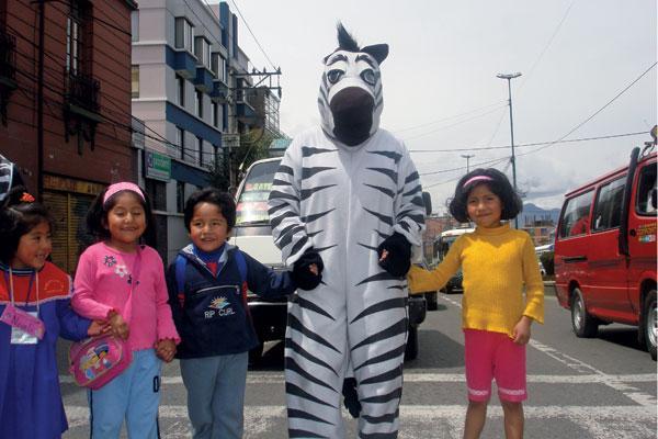 traffic zebra