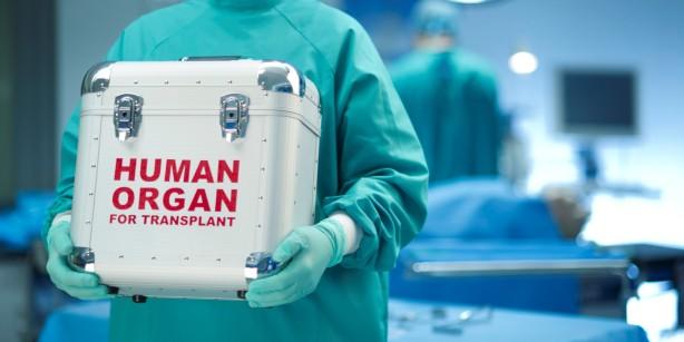 human-organ-transport