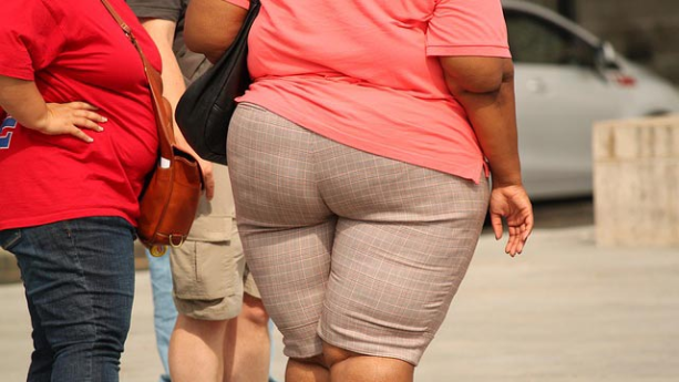 new-way-to-target-high-rates-of-obesity-307945