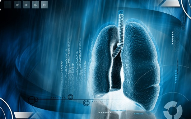 35472460 - digital illustration of human lungs in colour background